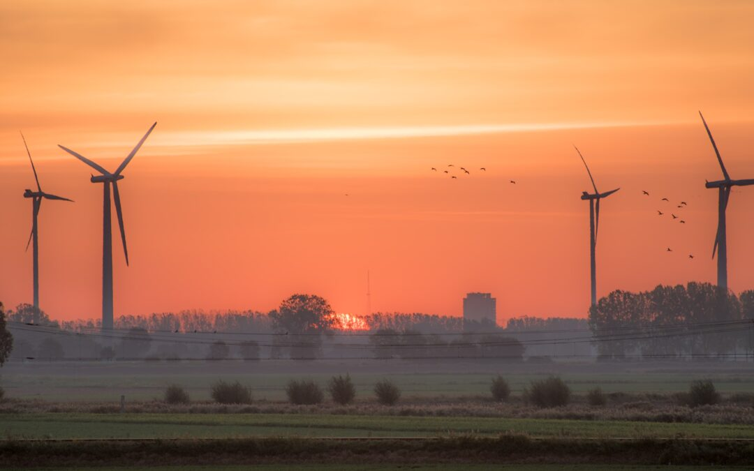 Is a Wind Lease Buyout Right for You?